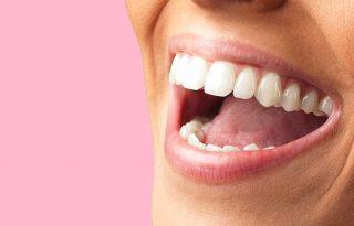 Полость рта – первый отдел желудочно-кишечного тракта